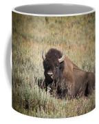 Big Buff - Bison - Buffalo - Yellowstone National Park - Wyoming Coffee Mug