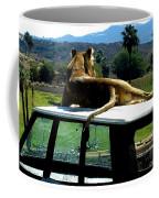 Big Cat Just Resting Coffee Mug
