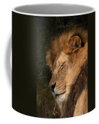 Big Cat Nap Coffee Mug