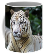 Big Cats 2 Coffee Mug