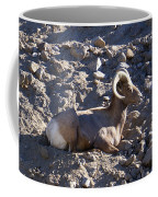 Big Horn Sheep Close Up Coffee Mug