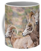 Big Horns Coffee Mug