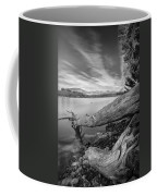 Big Roots Time Traces Coffee Mug