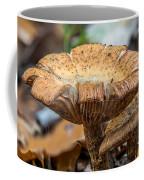 Big Shroom Coffee Mug