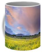 Big Storm And Tornado At Sunset Coffee Mug