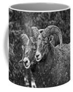 Bighorn Brothers In Grey Colorized Coffee Mug