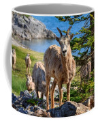 Bighorn Sheep Of Lake Minnewanka Coffee Mug