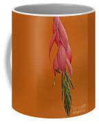 Bilbergia  Windii Blossom Coffee Mug