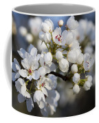Billows Of Fluffy White Bradford Pear Blossoms Coffee Mug