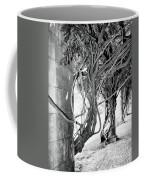 Biltmore Arbor Asheville Nc Coffee Mug