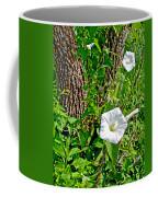 Bindweed In Pipestone National Monument-minnesota Coffee Mug