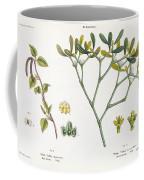 Birch And Mistletoe Coffee Mug