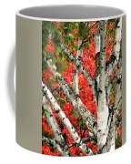 Birch Eclipsing Maple Coffee Mug