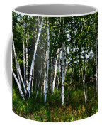 Birch Grove In The Sunlight Coffee Mug