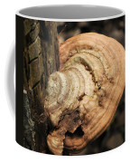 Artist's Conk  Coffee Mug