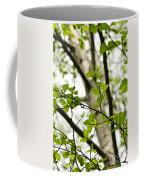 Birch Tree In Spring Coffee Mug