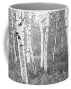 Birch Trees In A Forest, Acadia Coffee Mug
