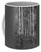 Birch Trees No.0148 Coffee Mug