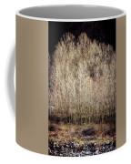 Birches In Winter Coffee Mug