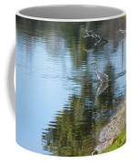 Bird And Pond Coffee Mug