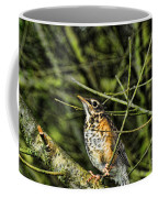 Bird - Baby Robin Coffee Mug by Paul Ward
