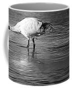 Bird Drinking Coffee Mug