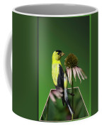 Bird Eating Seeds Coffee Mug