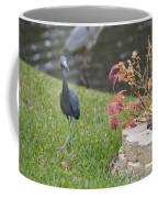 Bird In Yard Coffee Mug