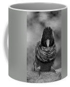Bird In Your Face Bw Coffee Mug