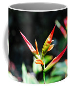 Bird Of Paradise Plant Coffee Mug