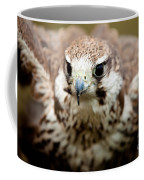 Bird Of Prey Flying Coffee Mug