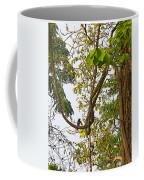 Bird On A Vine In Jungle Forest In Chitwan Np-nepal  Coffee Mug