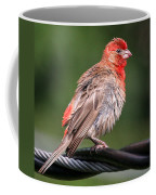High Wire Act Coffee Mug