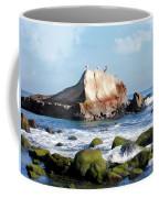 Bird Sentry Rock At Dana Point Harbor Coffee Mug