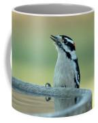Birdbath Coffee Mug