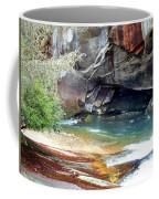Birdrock Waterfall In Spring 2 Coffee Mug