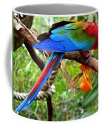 Birds Eye Coffee Mug