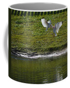 Birds In Fight Coffee Mug