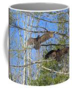 Birds Of A Feather Flock Together Coffee Mug