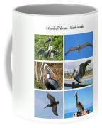 Birds - Pelicans - Boxed Cards Coffee Mug