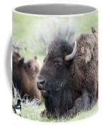 Bison And Birds Coffee Mug