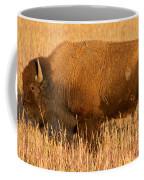 Bison At The Elk Ranch In Grand Teton National Park Coffee Mug
