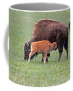Bison Calf Having Breakfast In  Yellowstone National Park Coffee Mug