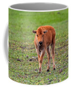 Bison Calf In The Flowers Yellowstone National Park Coffee Mug
