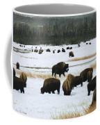 Bison Cows Browsing Coffee Mug