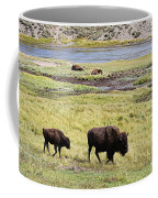 Bison Mother And Calf In Yellowstone National Park Coffee Mug