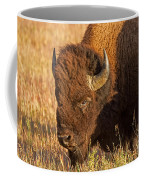 Bison Potrait At Teh Elk Ranch In Grand Teton National Park Coffee Mug