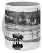 Bison Reflection Coffee Mug