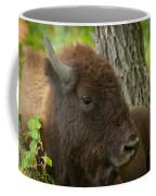 Bison Resting Coffee Mug