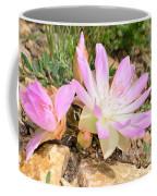 Bittterroot IIi Coffee Mug